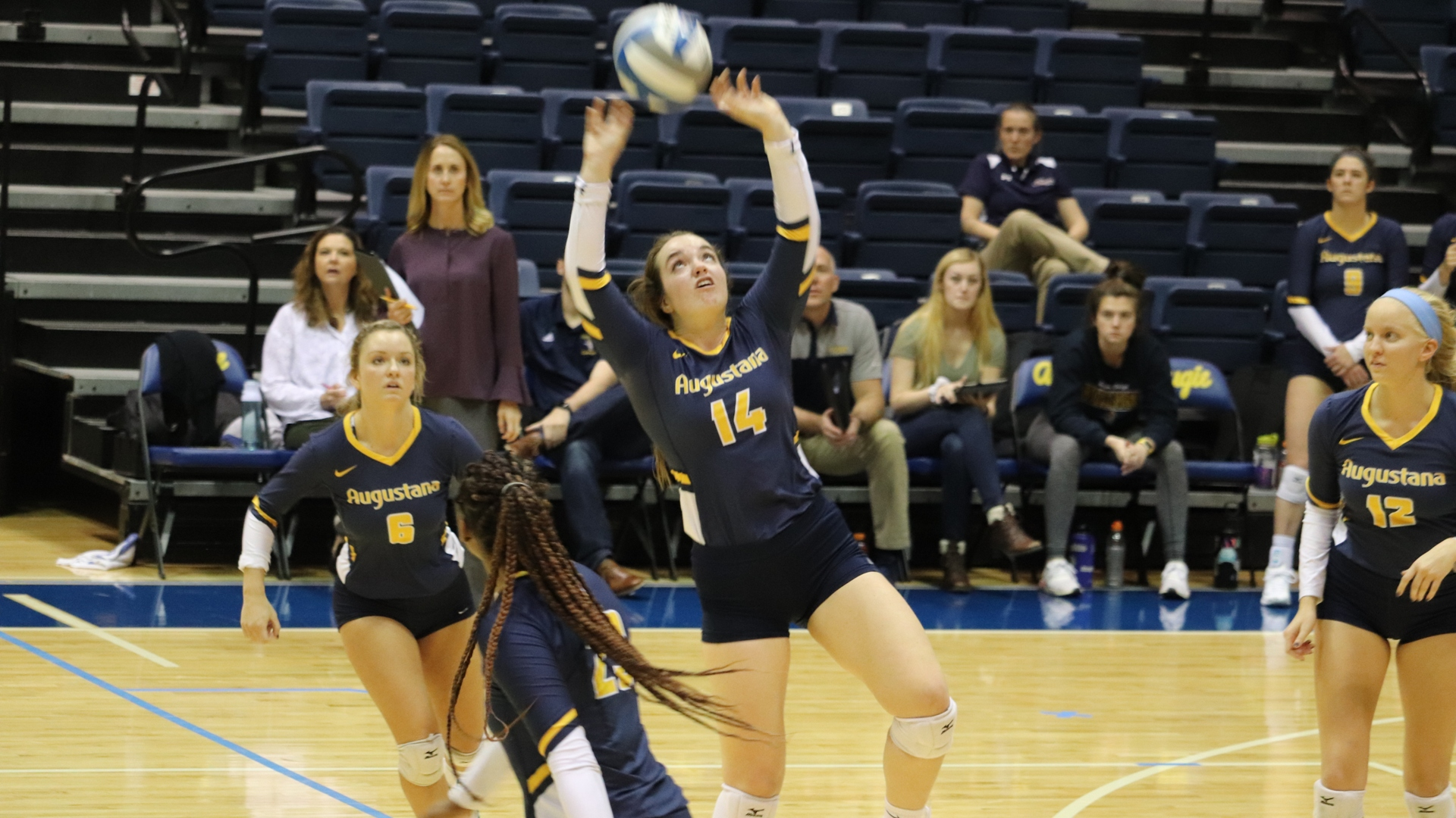 Women S Volleyball Augustana College Athletics